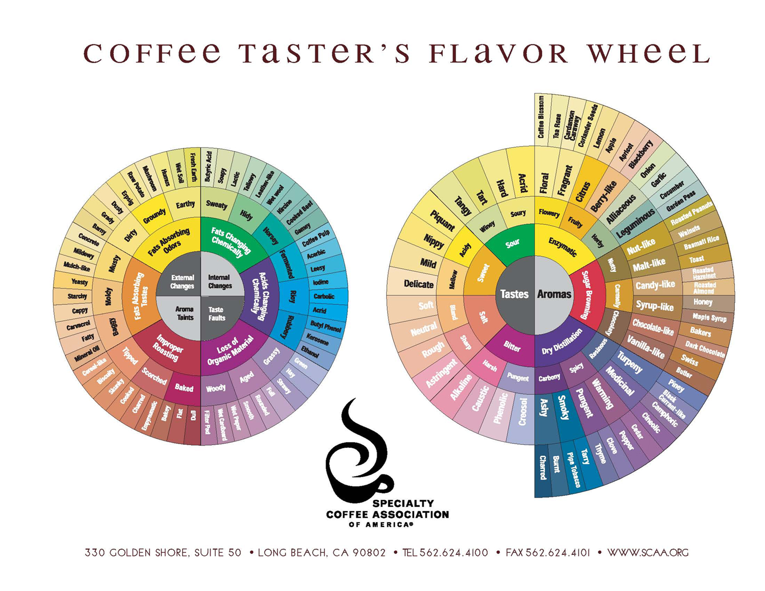 The SCAA Coffee Taster's Flavour Wheel