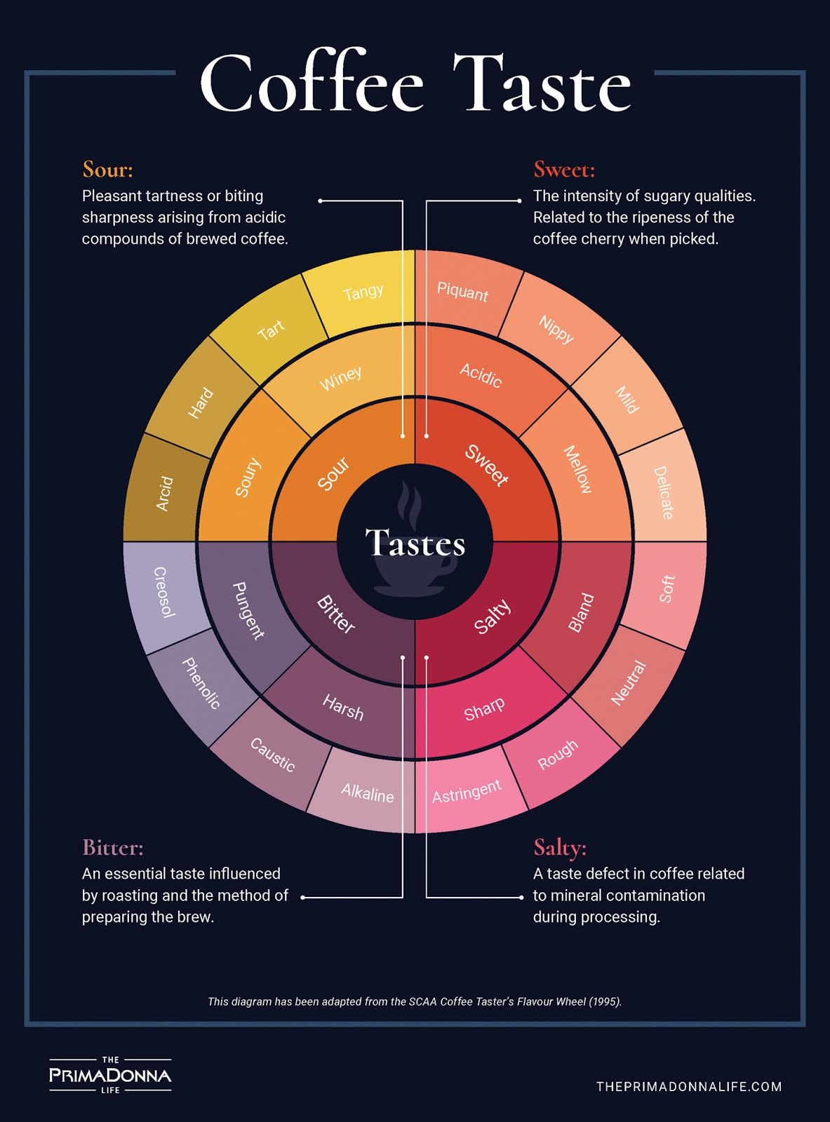 An abridged version of the Coffee Tasting Wheel, where we break down the notes and nuances a coffee can have