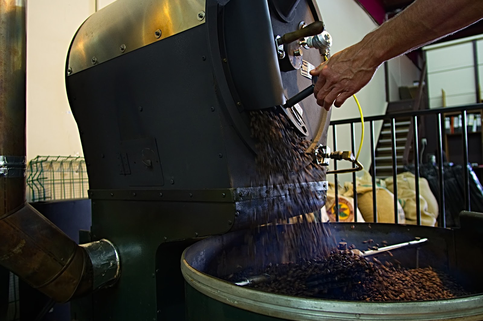 a man dispensing roasted coffee beans from a coffee bean roaster