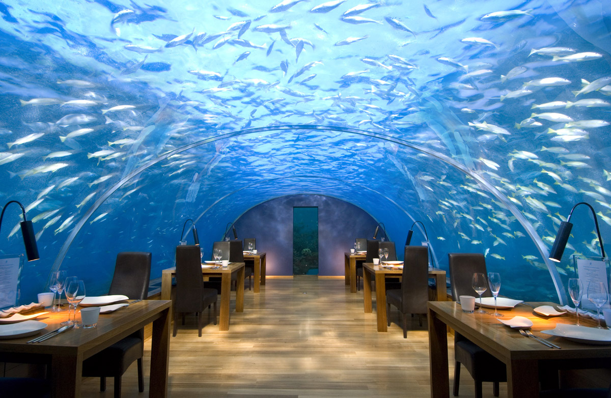 an underwater restaurant with glass ceiling