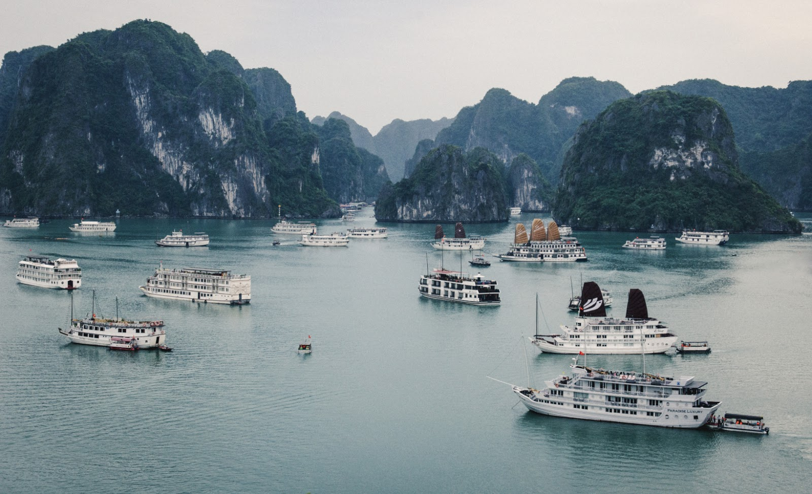 multiple cruises docked in Ha Long Bay
