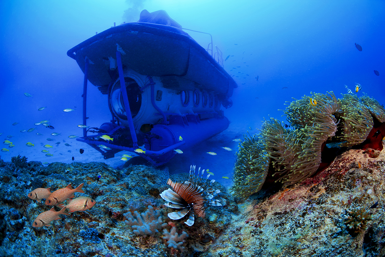 a submarine passing through colourful corals and marine life