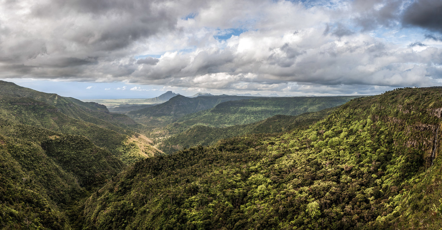 a panoramic view of the Black River Gorges National Park in Mauritius