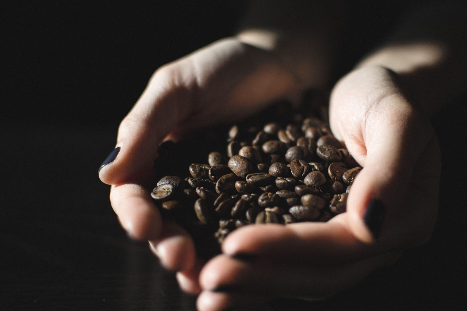 a person holding coffee beans in their palms