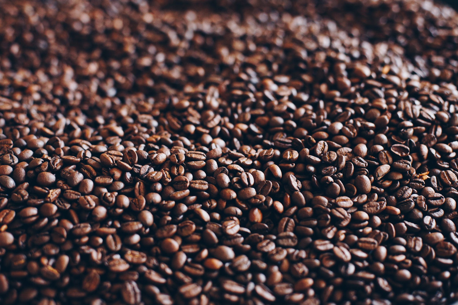 a photo of roasted coffee beans