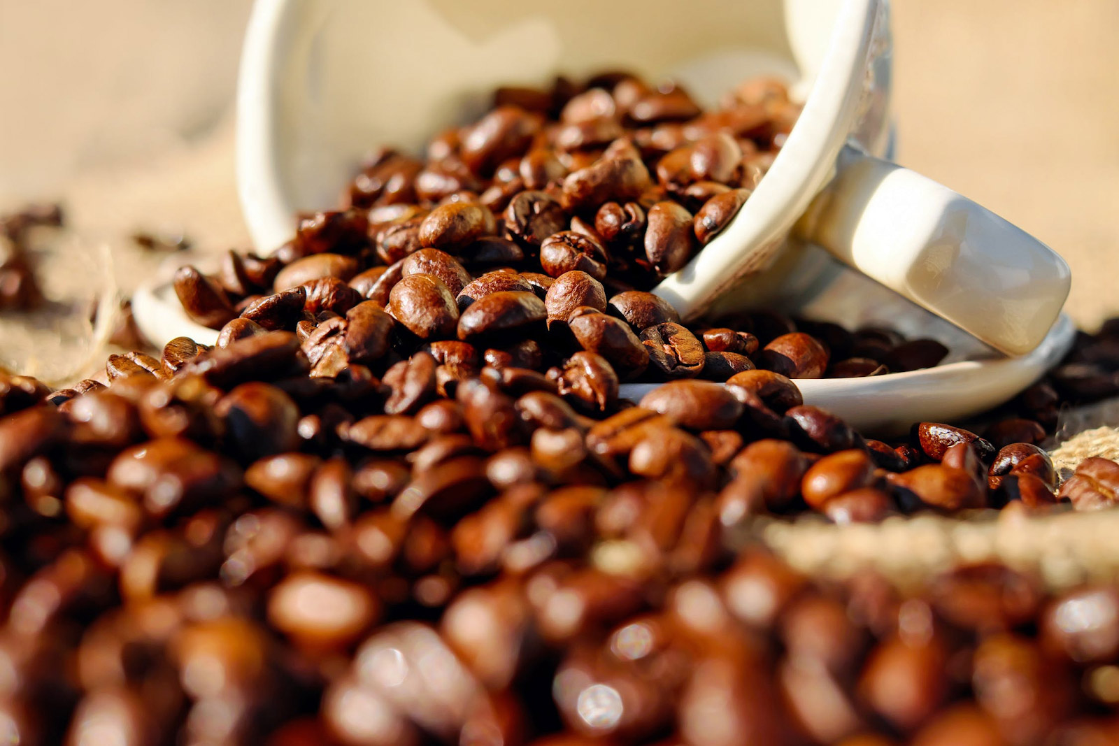roasted coffee beans spilling out from a cup