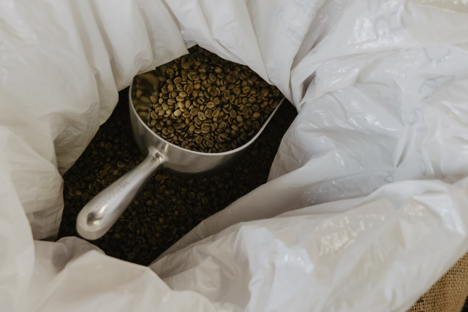 a scoop of green coffee beans in a plastic bag
