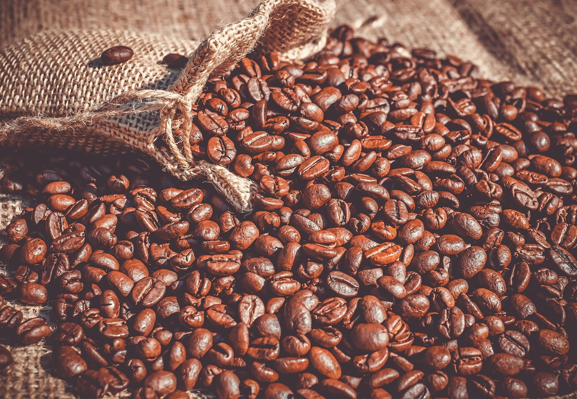 roasted coffee beans scattered
