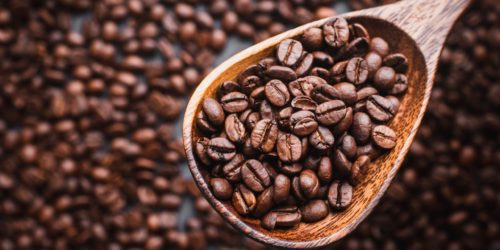6 Tips for Choosing the Best Coffee Beans for Yourself