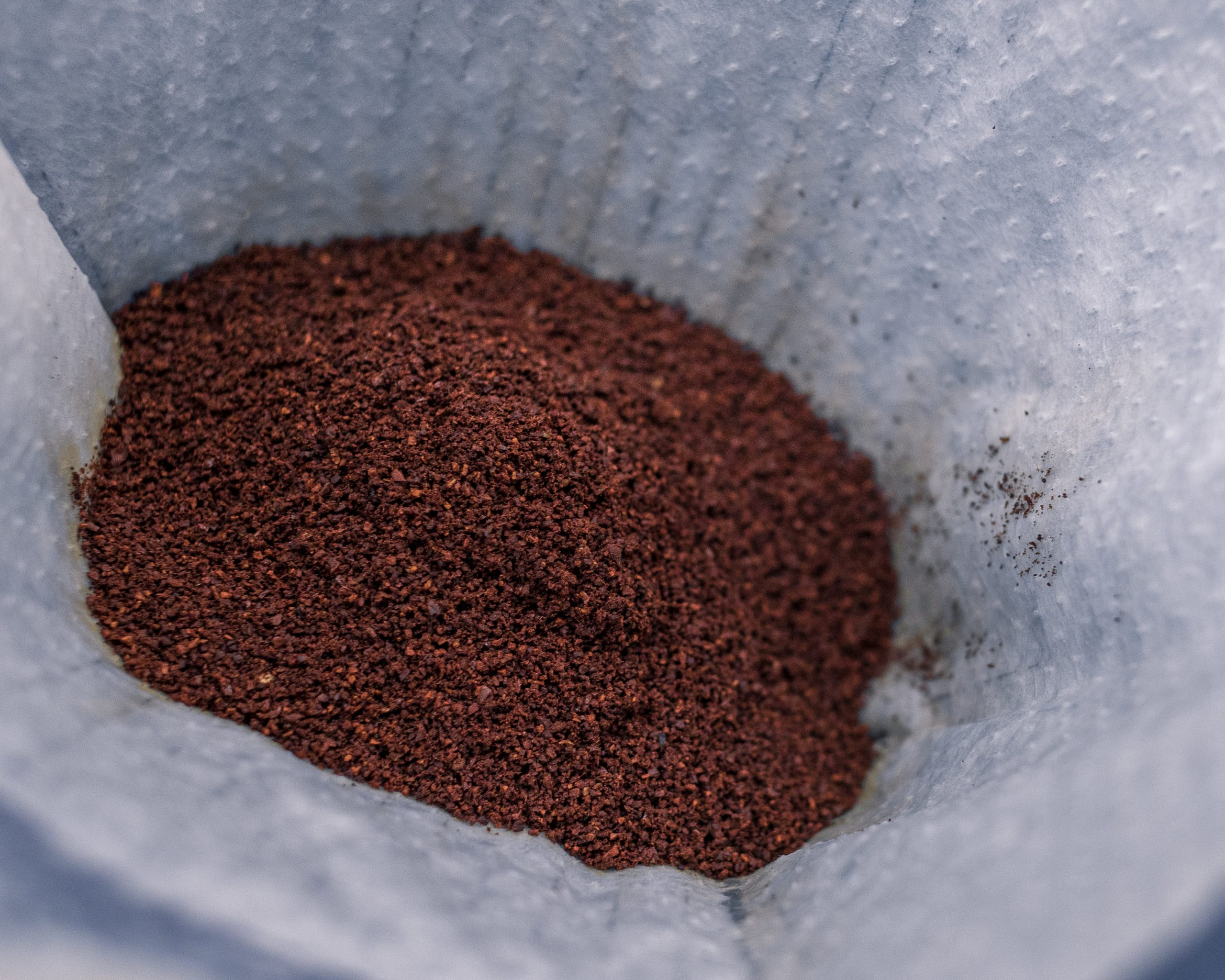 coffee grounds on a filter paper