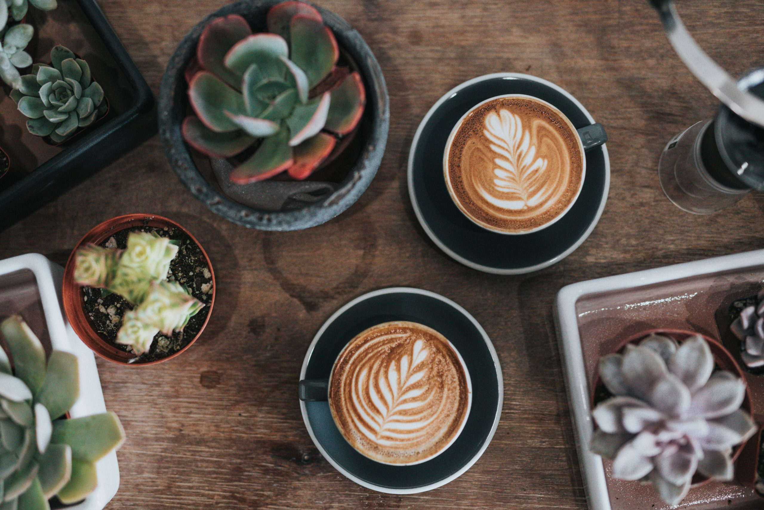 two cups of latte placed side by side on a wooden table