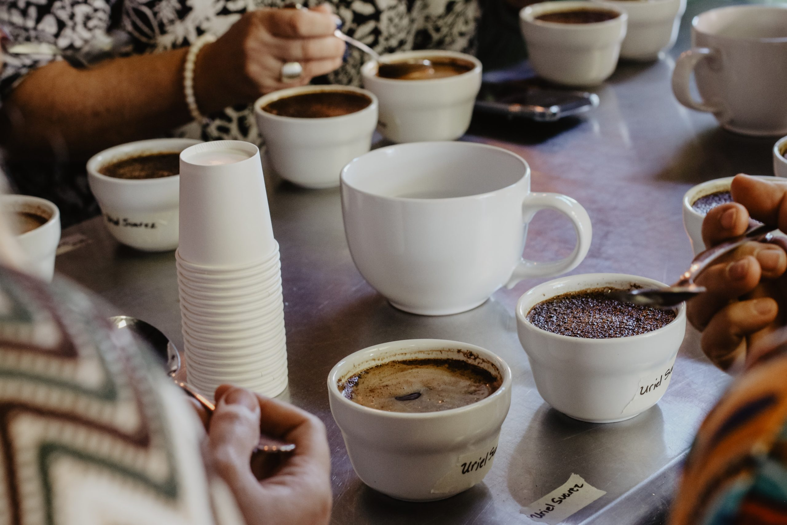 people doing a coffee cupping session