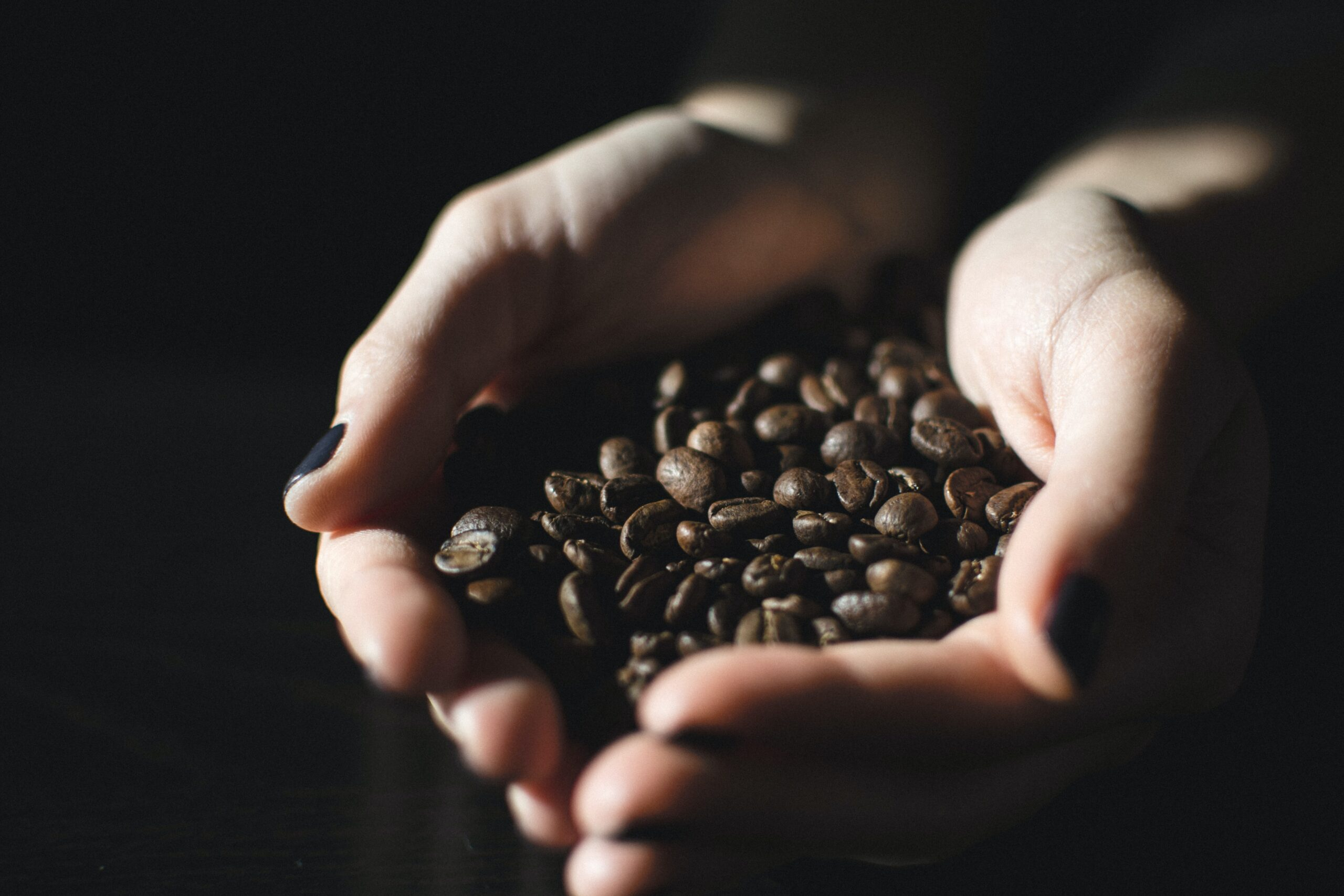 coffee beans in a person's hand