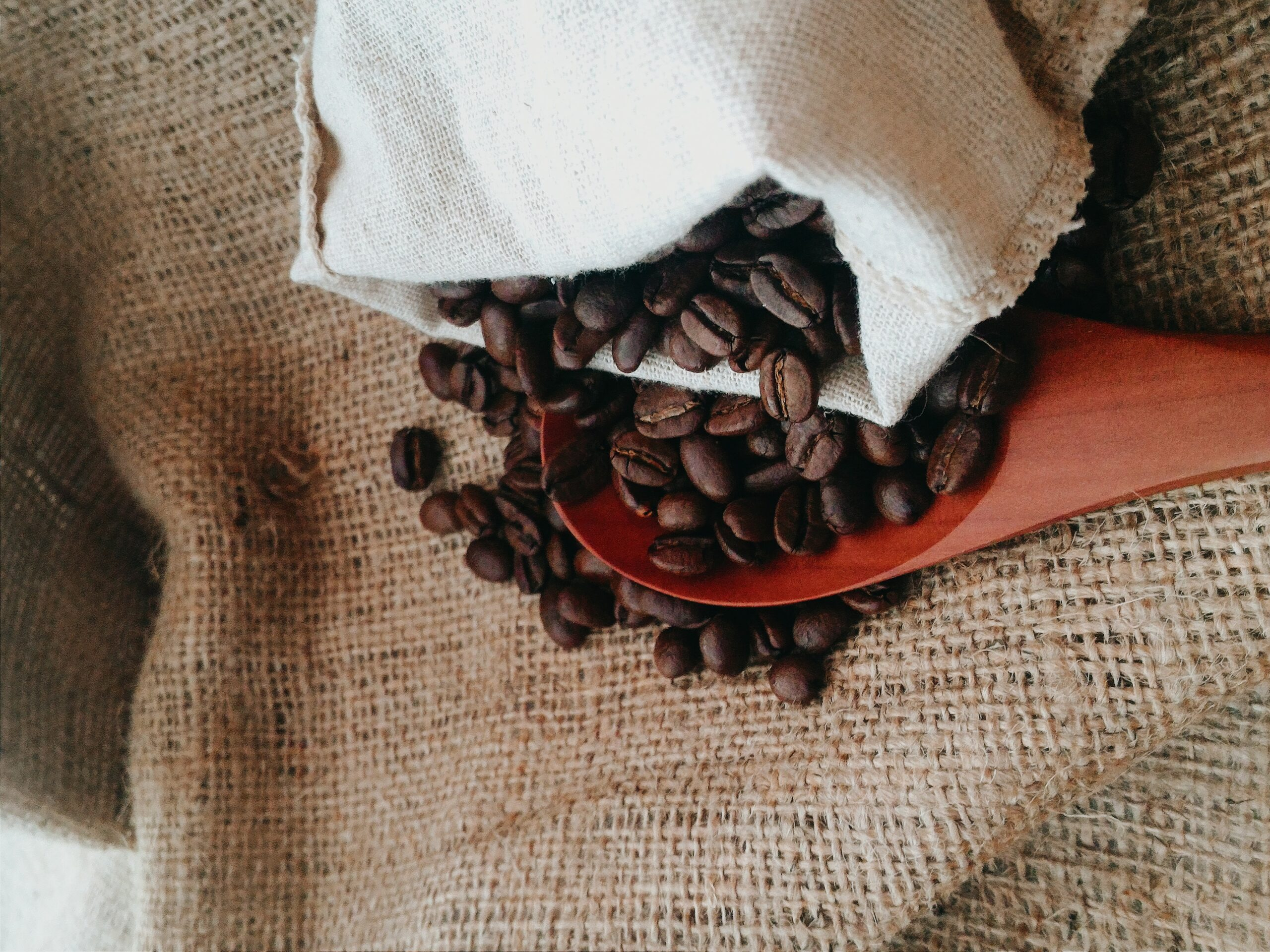 coffee beans scattered